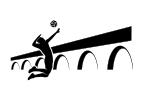 AS Volley du Garon Logo